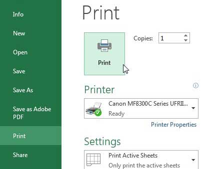 click the print button in the print window