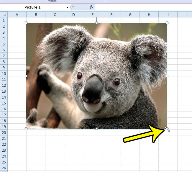 how to make a picture bigger or smaller in excel spreadsheet