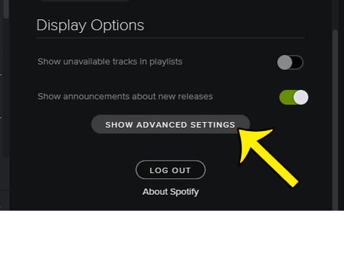 how to stop spotify at startup