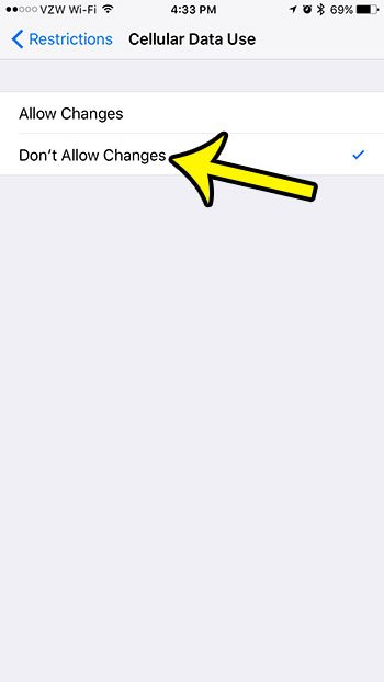 disable changes to iphone cellular data settings