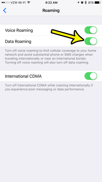 how to turn on data roaming on an iphone 7