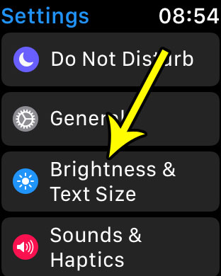 open the brightness and text size menu