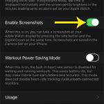 how to enable screenshots on apple watch