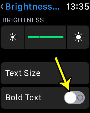 how to enable bold text on apple watch