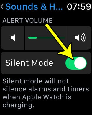 how to put the apple watch in silent mode