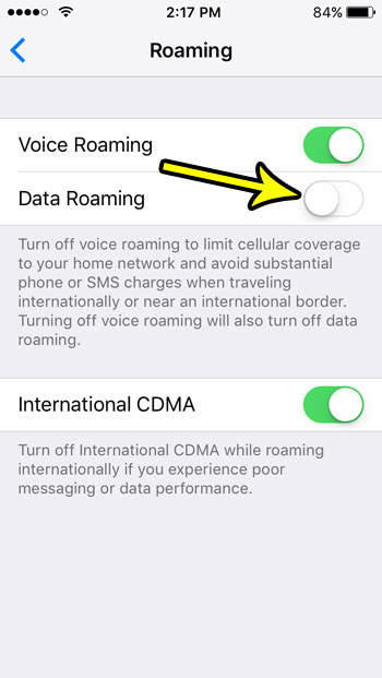 how to turn off cellular data roaming on an iphone se