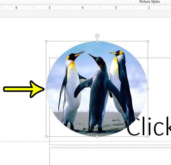 how to crop a picture to a circle in powerpoint 2013