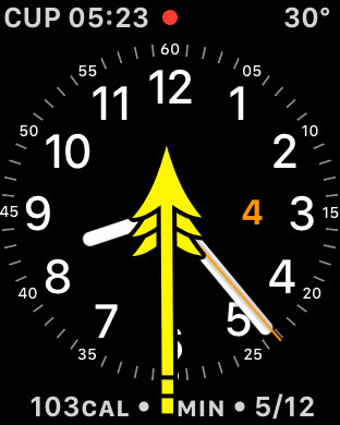 how to enable airplane mode on apple watch