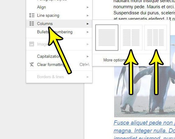 how to add a column in google docs