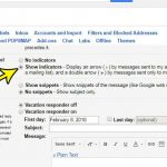 how to show personal level indicators in gmail