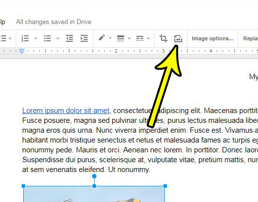 how to reset a picture in google docs