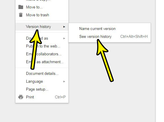 how to view version history in google docs