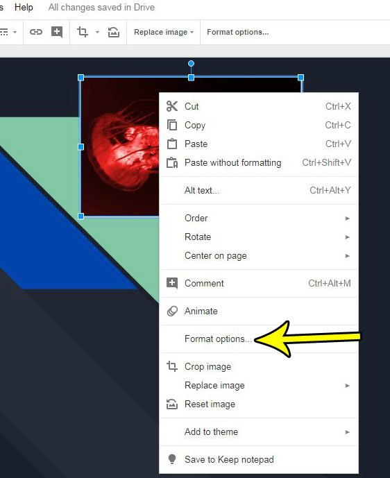 format picture options in google slides