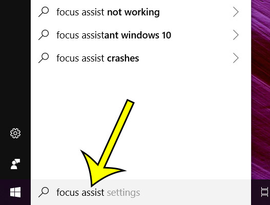 type focus assist into search field