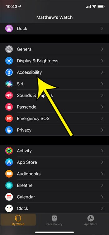 open the Accessibility menu