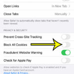 how to enable cookies in Safari on an iPhone 11