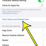 how to clear iPhone 6 Safari history